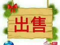 美亞華悅黃金樓層110平 毛坯 無稅103.8萬13062939586