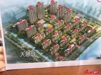 天颐城小洋房7楼毛坯现房改合同127平方三室两厅二卫128.8万