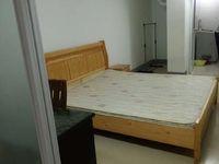 金鼎1楼1室1厨1卫有家电750元/月7楼二室二厅1800月